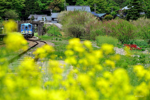 Станция Кадохара, Фукуи