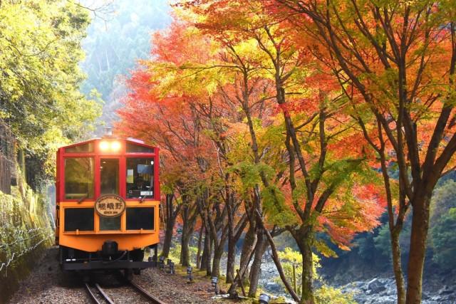 Поезд Сагано Торокко