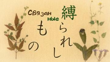 05. Связанные   Natsume Yuujinchou Roku - 05 [AG]